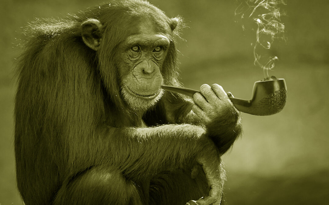 When a Smoking Habit is More than Just a Habit